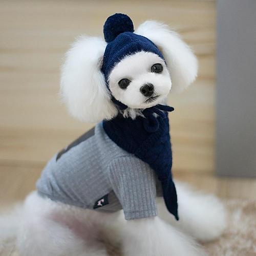 치펫 강아지 고양이 니트모자 목도리 세트