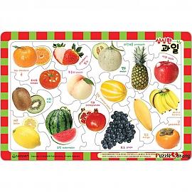 17조각 판퍼즐 - 싱싱한 과일
