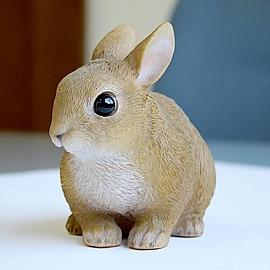 MAGNET 마그넷 펫 저금통 토끼